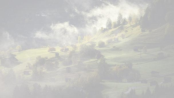 Projekt JPÚ Lužianky, Lokalita Diely I. Všeobecné zásady funkčného usporiadania územia