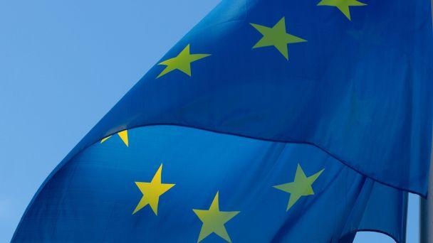 Voľby do Európskeho parlamentu 25.5.2019